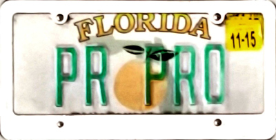 PR PRO License Plate